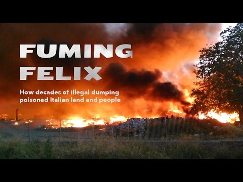Fuming Felix. How decades of illegal dumping poisoned Italian land and people.