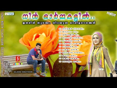 Nin Ormakalil |Saleem kodathoor Mappila Songs|Selected Romantic Mappilapattu album 2018