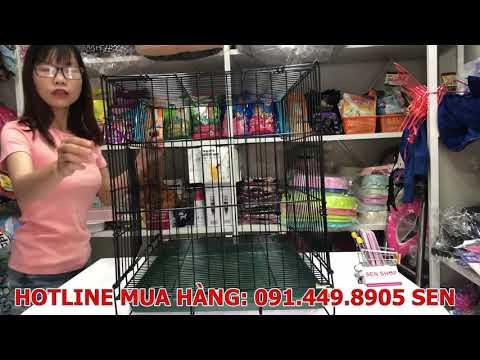 Hướng Dẫn Cách Lắp Chuồng Cho Chó Mèo Sơn Tĩnh Điện 0914498905 SEN