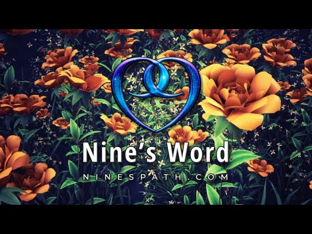 Time Is Healing Wounds   Nine's Word Pleiadian Message