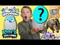 Surprise Hatchimal Egg Treasure Hunt Adventure!