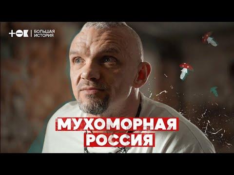 Мухоморная лихорадка. Почему в России стало модно есть ядовитые грибы | ТОК