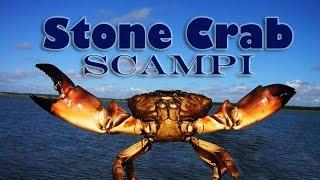 Stone Crab Scampi! Custom Boat Shootout 2015: Tasty Tuesday 19
