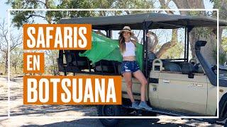 Los mejores safaris en Botsuana 🐘