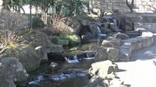 mizu水WATER見沼代親水公園2 thumbnail