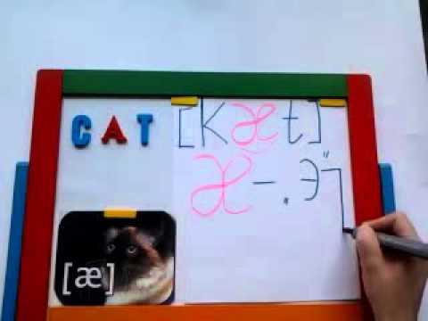 УРОКИ АНГЛИЙСКОГО транскрипция слова ''cat''