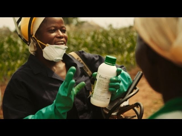 Fighting Malaria in Ghana: Recycling Gives Insecticide Bottles New Use