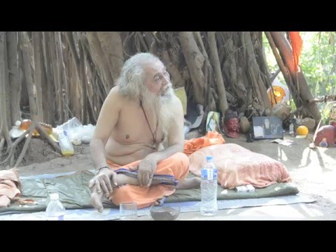 Wisdom of Baba (Indian Elder) under the banyan tree in Arambol