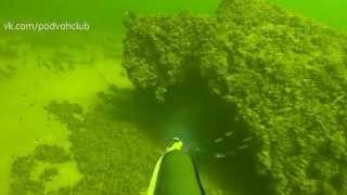 Подводная охота. Волга март 2015 г.