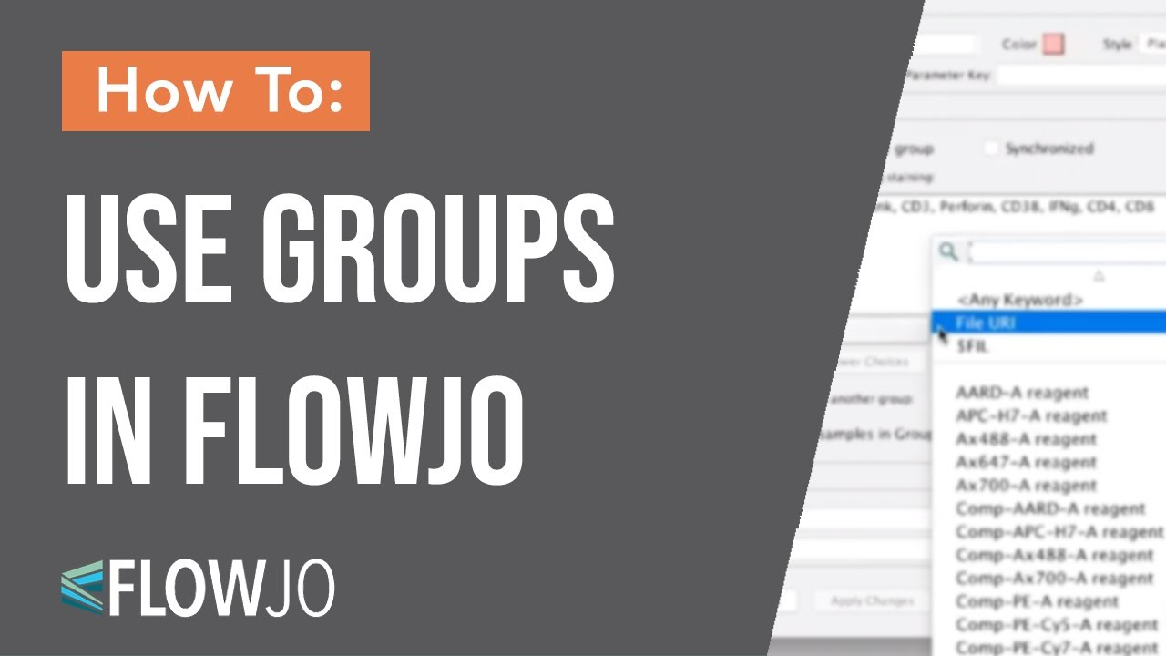 How To Use Groups In Flowjo Youtube
