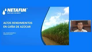 Curso en Linea - Caña de azúcar Módulo 2  Seguimiento de indicadores para altos rendimientos