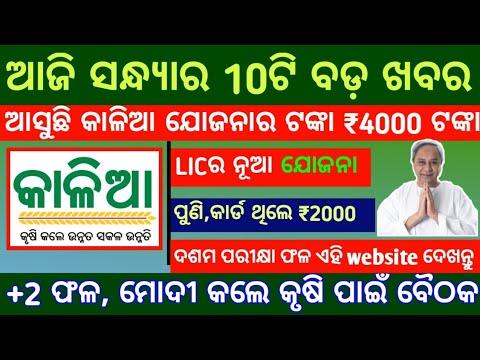 kalia yojana 2nd 3rd list money date ll Today Odisha Evening News, Ration card, LIC,SBI,krusi runa from YouTube · Duration:  7 minutes 30 seconds