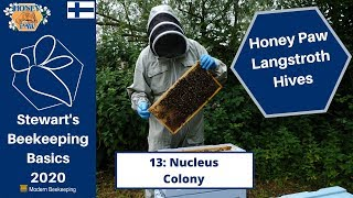 Honey Paw Series 13 - Nucleus Colony - Stewart Spinks at the Norfolk Honey Co.