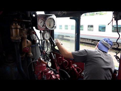 Поездка на паровозе