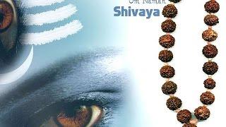 MOST POWERFUL HINDU MANTRA :MAHAMRITUNJAY MANTRA HAVAN : 108 CHANTS