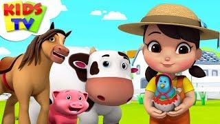 Viejo Macdonald Tenía Una Granja | Boom Compañeros de dibujos animados | Videos Para Niños - TV de los Niños