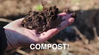 A Tasty Recipe for Compost!