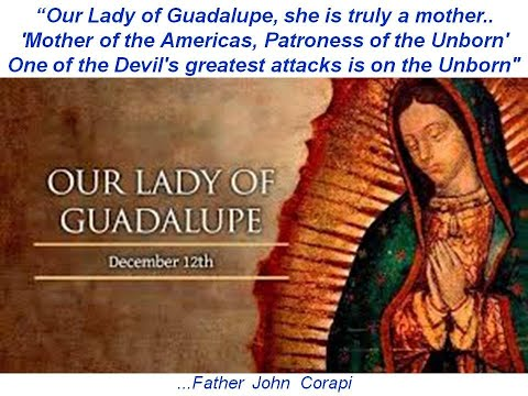 'Mother of the Americas, Patroness of the Unborn' - OUR LADY OF GUADALUPE