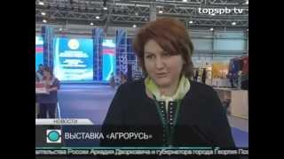 Смотреть видео Телеканал «Санкт-Петербург». Новости. Апрель 2014 онлайн