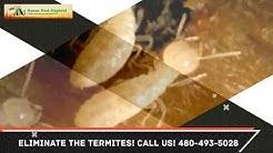 Termite Control Chandler AZ 480-493-5028 Ozone Pest Control