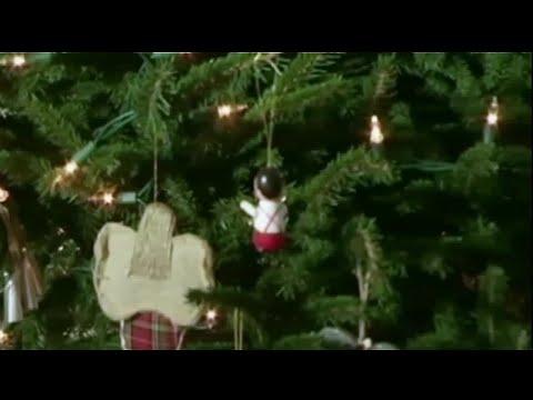 WDSU: Ask the Vet - Christmas decorations