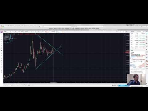 🤒13900 Bitcoin Preis 🚀+250% LRC, DLT, DRGN, DBC fliegen davon