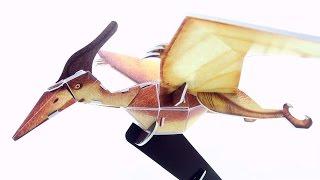 Pteranodon 3D puzzle - Dinosaur model built in 3D - Build a Pteranodon Pterosaur for kids