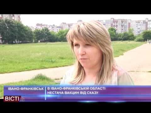 В Івано-Франківській області нестача вакцин від сказу