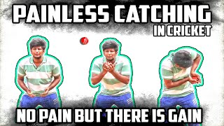 Painless catching technique in cricket   Cricket fielding tips   Nothing But Cricket