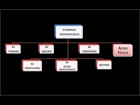 Vitaminas hidrosolubles: Vitamina B9 o Ácido fólico