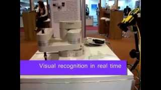 Robot Vision with COGNEX Camera