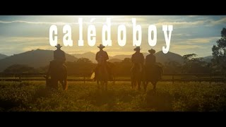 Download IKY - Calédoboy (Clip Officiel) MP3 song and Music Video