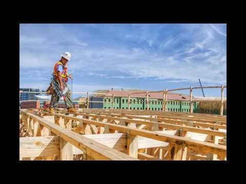 carpenter essex - Must see!