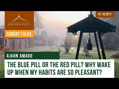 The Blue Pill or the Red Pill? Why Wake Up When My Habits Are So Pleasant? by Ajahn Amaro