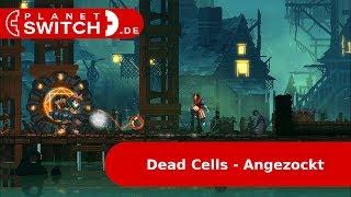 Dead Cells (Switch) - Angezockt