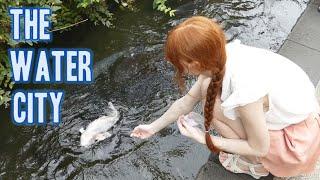 The Water City   Gujo Hachiman 名水の町・郡上八幡