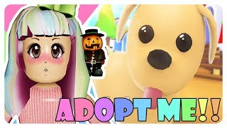 """😱 UPDATE PETS, DRAGON CASTLE & THE LEGENDARY GIFT OF SUBEAR 😍"" 