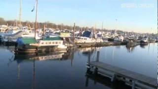 Keine Angst vor Klimawandel: Holland setzt auf schwimmende Häuser - SPIEGEL TV