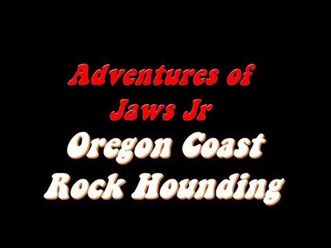 Oregon Coast Rock Hounding!