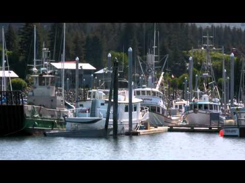 Guided Cruise On Kachemak Bay & Tour Of Historic Seldovia | Central Charters & Tours | Homer, Alaska