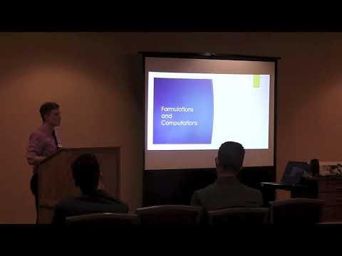 Optimization Techniques for Financial Applications