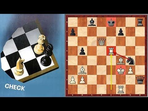Chess Record: Longest Mutual Series Of Checks!