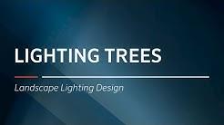 Lighting Trees  | Landscape Lighting Design by FX Luminaire