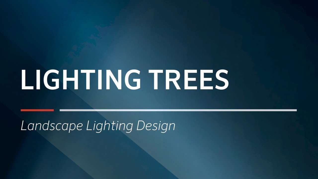 Lighting Trees Landscape Design By Fx Luminaire