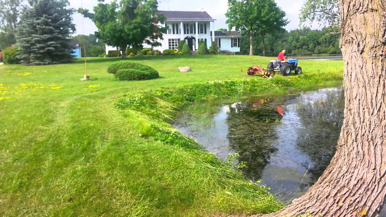 Pond Edge Trimming Youtube