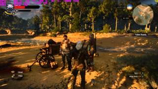The Witcher 3  PC Gameplay with FPS counter 1080p/60FPS MSI GTX 980 i5 4670k