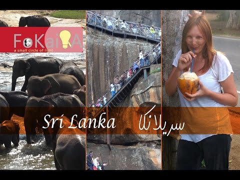 mini idea 173   Travel on a budget Sri Lanka الفكيرة 173   السفر بأقل التكاليف سريلانكا