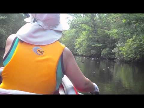 Kayaking - Rancocas Creek