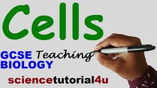 CELLS  (Animal & Plant cells) GCSE BIOLOGY SCIENCE