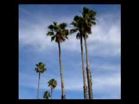 California trip Jan 2008